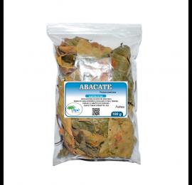 Abacateiro (Persea americana - Folha) - 100g