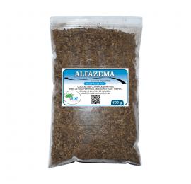 Alfazema (Lavanda angustifolia - Semente) 100g