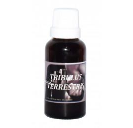 Tribulus Terrestris Extrato Liquido 30ml