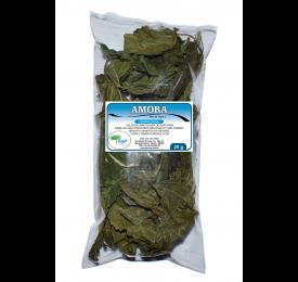 Amora ( Morus nigra L. - Folhas) - 20g Para Chá