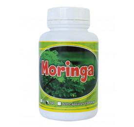 Moringa Oleífera 100 Cápsulas 500mg - Erva Nativa