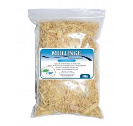 Mulungu ( Erythrina mulungu - Casca Rasurada) - 100g